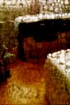 IMG_1457